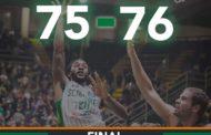 FIBA Champions League 2016-17: Avellino che beffa, Tenerife vince allo scadere