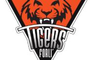 Serie B girone C Mercato 2017-18: Antonio De Fabritiis da Valmontone ai Tigers Forlì