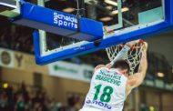Basketball Champions League Round 11 2017-18: la preview di Sidigas Avellino-Zielona Gora