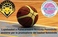 Giovanili Femminili 2017-18: la collaborazione tra Lupebasket e Pallacanestro Noventa per la diffusione del basket femminile