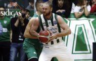 Basketball Champions League 2017-18 Round 11: la Sidigas Avellino cede in casa al Zielona Gora