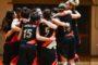 Lega Basket Femminile A2 girone Sud 2017-18: sconfitta della AndrosBasket Palermo in casa della Cestistica Campobasso
