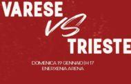 LBA Legabasket 2^ritorno 2019-20: Openjobmetis Varese per dare corpo alla risalita come l'Allianz Trieste che gara a Masnago!